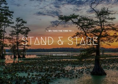 Stand and Stare