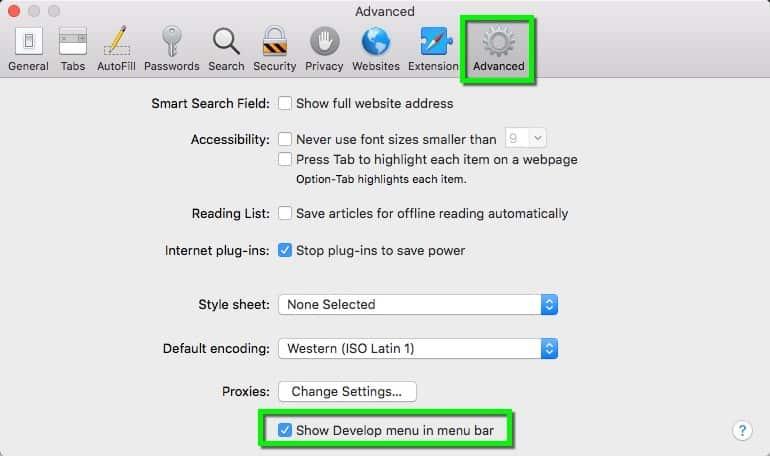 safari browser cache